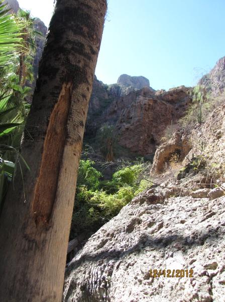 Nacapule Canyon