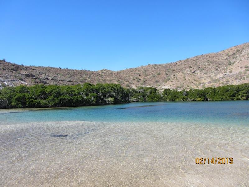 saltwater lagoon.jpg