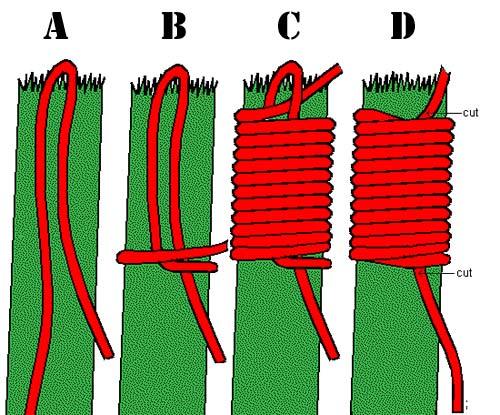 whip-rope.jpg