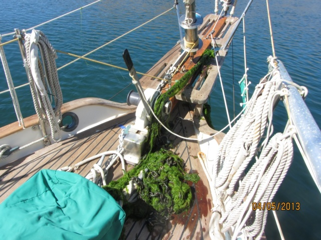 And, of course, it all resulted in a mess on deck.